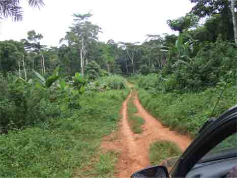 driving in Cameroon